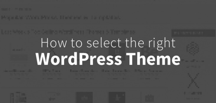 How to select the right WordPress theme